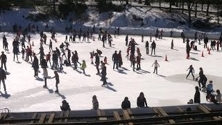 Trump (Wollman) Ice Rink  - Winter Skating in New York City's Central Park