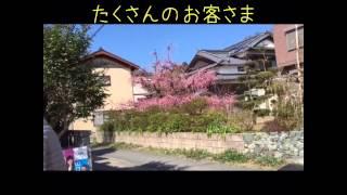 アダナケバブハウスさん。2016年糸島志摩小富士梅林にてイベント。
