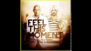 Download Pitbull feat. Christina Aguilera - Feel This Moment With lyrics