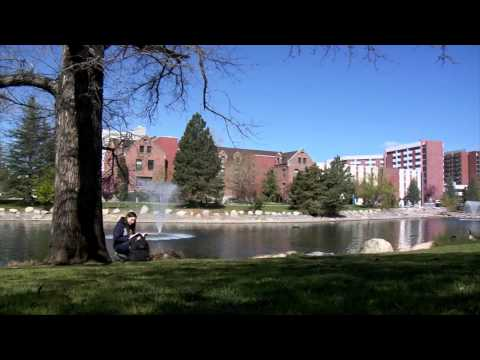 Ronald McDonald House Northern Nevada - Scholarship - PSA - #2
