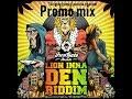 Lion inna Den Riddim Mix (DEC 2018,FULL) Feat. Sizzla,Lutah Fyah,Exco Levi,Voltage,Teflon.+More