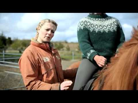 Íshestar - How to ride an Icelandic horse?