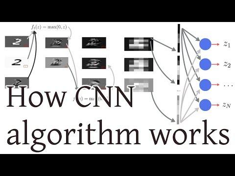 How CNN (Convolutional Neural Networks) algorithm works
