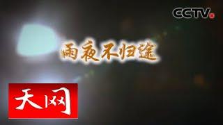 《天网》 雨夜不归途   CCTV社会与法