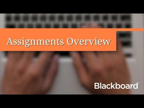 Assignments Overview (Student)