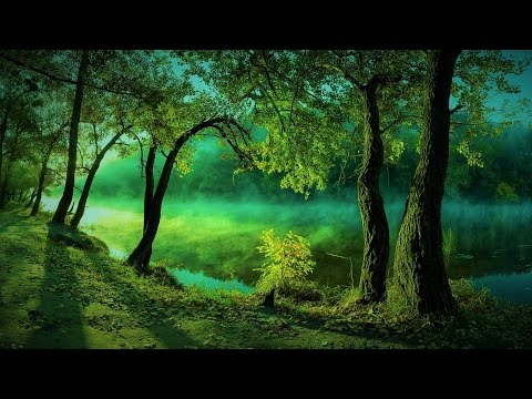 Forest Elf Music - The Emerald Realm