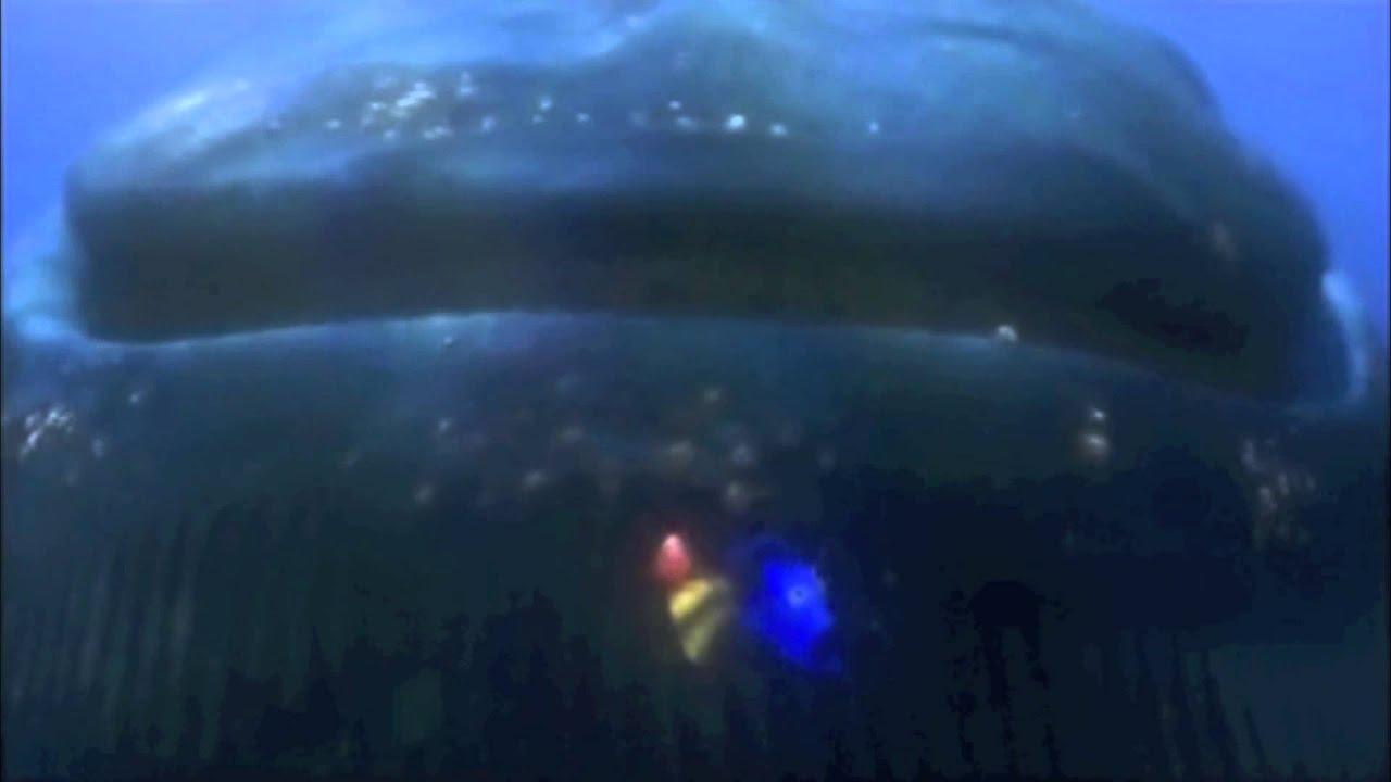 finding nemo alternate whale scene youtube