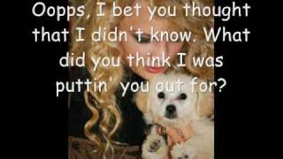Taylor Swift- Irreplaceable (Lyrics)