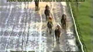 VM CAMANERO ON (KISSING BANDIT) 1998  GRAND FUTURITY STAKE RACE