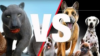 КОТЫ против СОБАК ИГРЫ на iPad! CATS against DOGS GAMES for iPad!