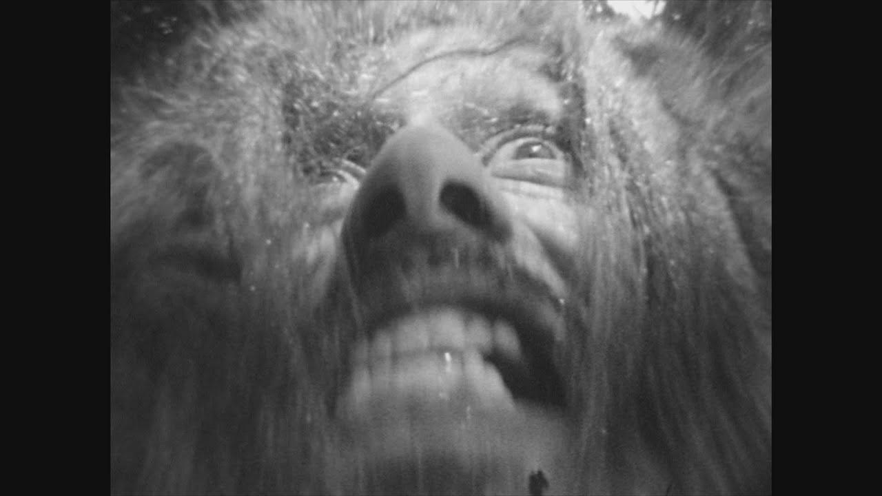 "SPACE COKE ""Corpsewood Manor"" (2019)"
