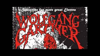 Wolfgang Gartner - There and Back (Original Mix)