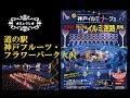 2018 神戸イルミナージュ 道の駅神戸フルーツ・フラワーパーク大沢 (11/3)