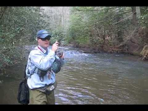 Fly fishing georgia smithgall woods and chattooga river for Fly fishing georgia