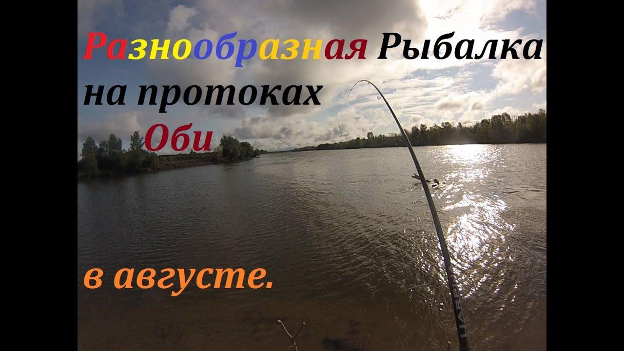 ловить щуку на реке обь
