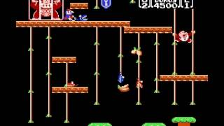 Donkey Kong Jr - Jump and fell in level 2 - User video