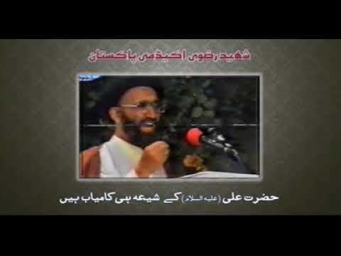 The Followers Are Imam Ali (A.S) Are Succesfull - Allama Sayyed Zia Ud Din Rizvi