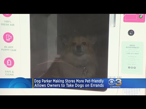Dog Parker' Making Stores More Pet Friendly - YouTube