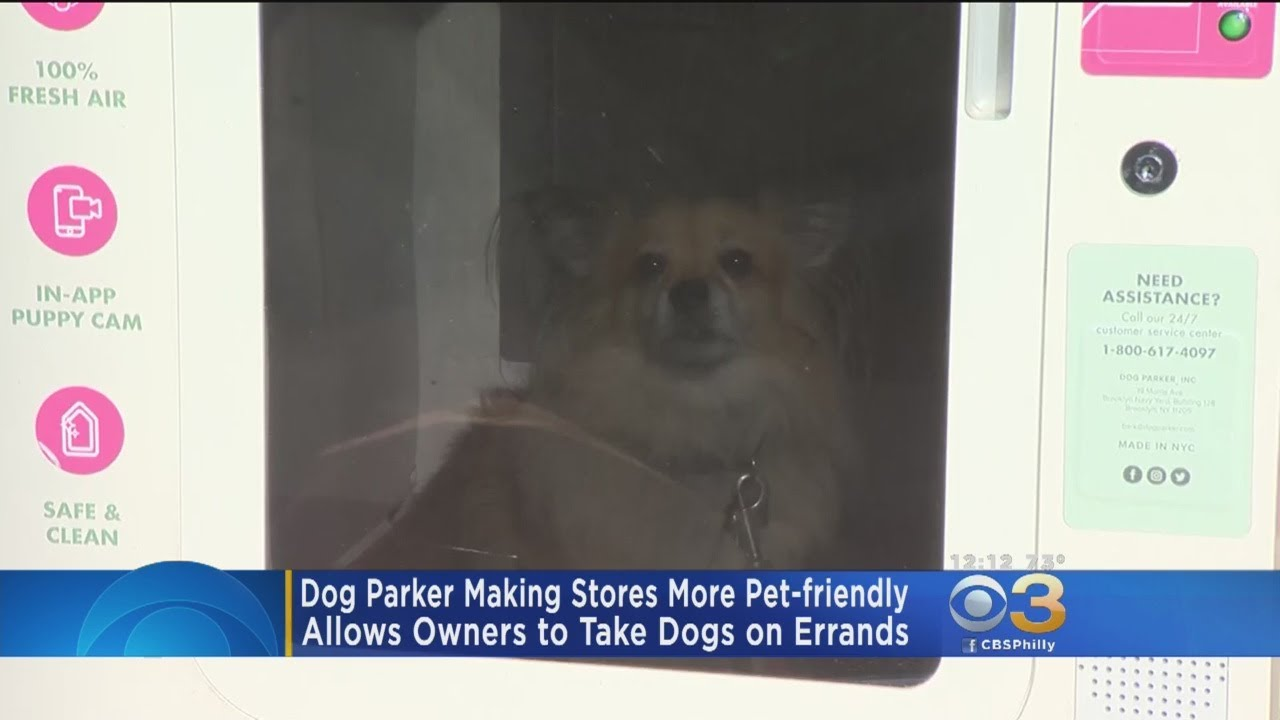'Dog Parker' Making Stores More Pet Friendly