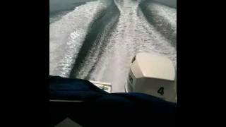 bateau a moteur johnson 115 cv