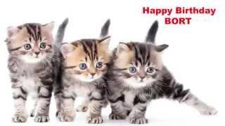 Bort Birthday - Cats & Gatos