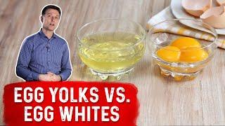 Forget the Egg Whites  Eat the EGG YOLKS