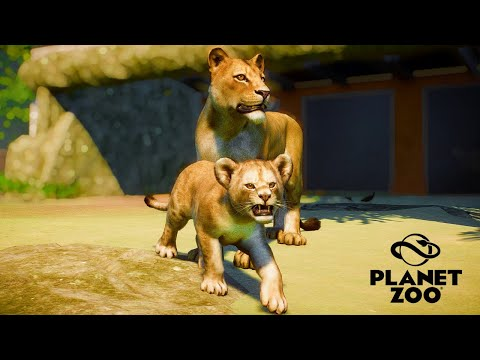 Life of Lion Cub | My First Video on Planet Zoo |