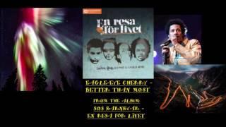 Eagle-Eye Cherry - Better Than Most [Audio]