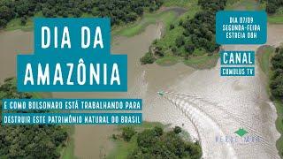 Bolsonaro clickbait; Dossiê de destruição do meio-ambiente; Cerveja amazônica e mais...