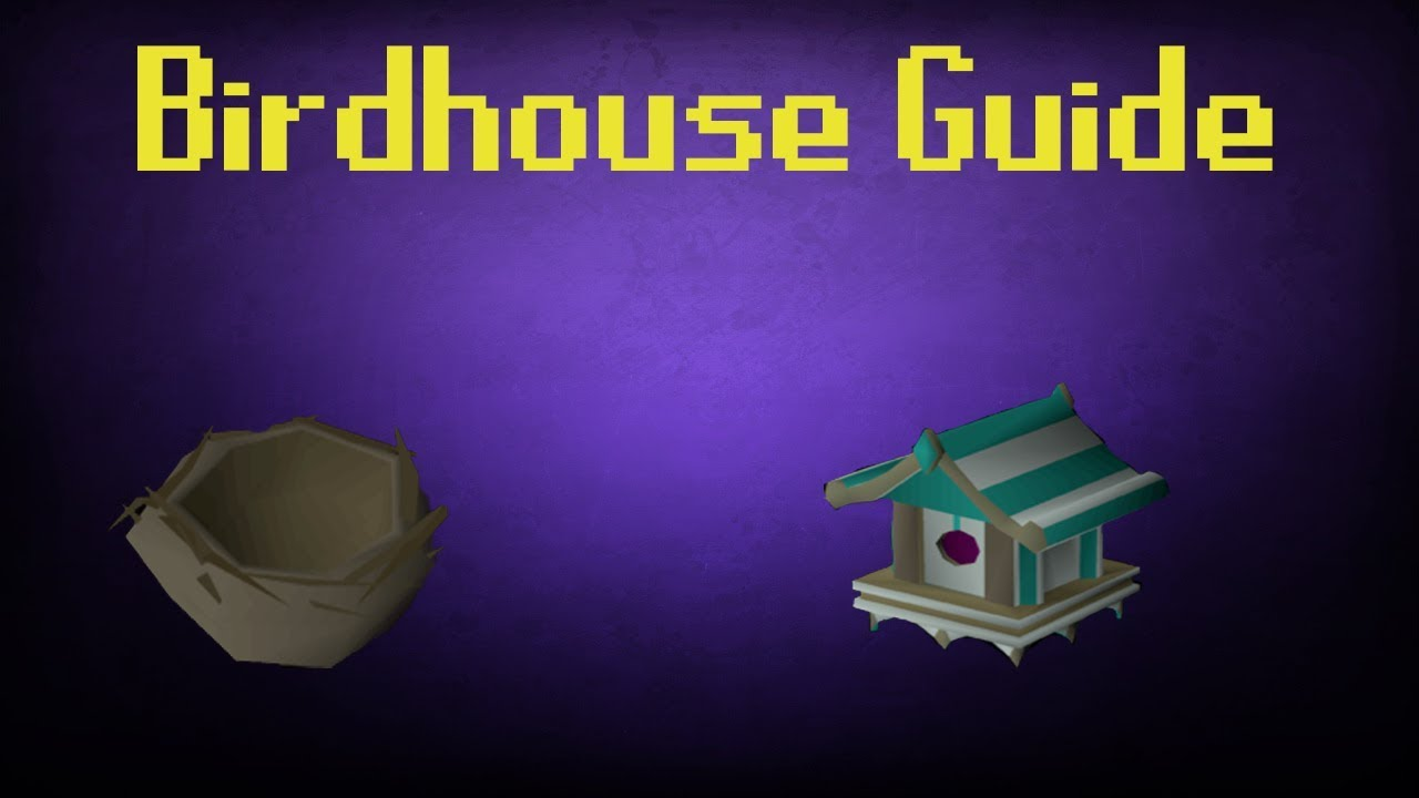 Osrs Fossil Island Birdhouse Run Guide 4k Hunter Xp 6 Nests Per Run Youtube Bird houses are used in setting bird house traps on fossil island, requiring a hunter level of 5 to use. osrs fossil island birdhouse run guide 4k hunter xp 6 nests per run
