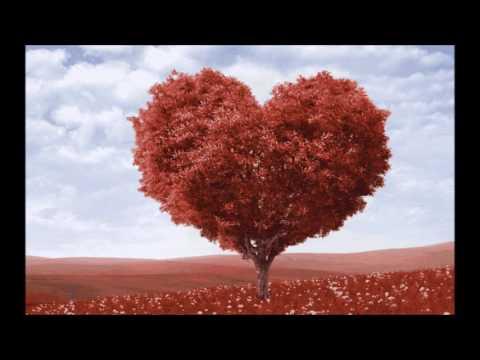 Фото слайды Слова любви. На заказ.avi