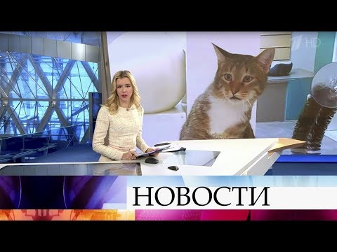 Выпуск новостей в 09:00 от 13.11.2019
