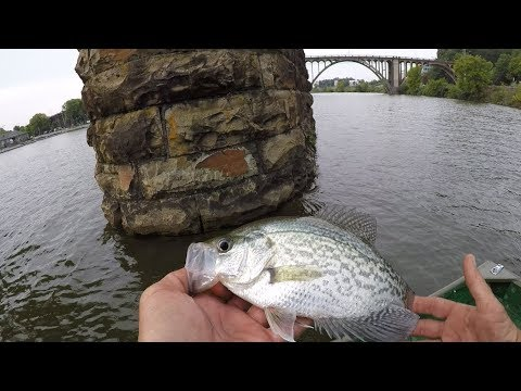 Summertime Crappie Fishing On The Coosa River