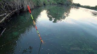 Прикормка собрала карася. Рыбалка на поплавок На деревенском пруду.