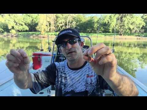 How to rig up to catch ALLIGATOR GAR.