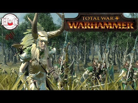 Bretonnia vs Wood Elves  - Total War...