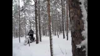 АС М8 Семенов вчимося їздити в лісі