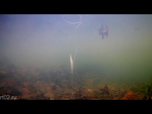 Копия Megabass Vision 110 от Wlure  M262S (подводная съемка)