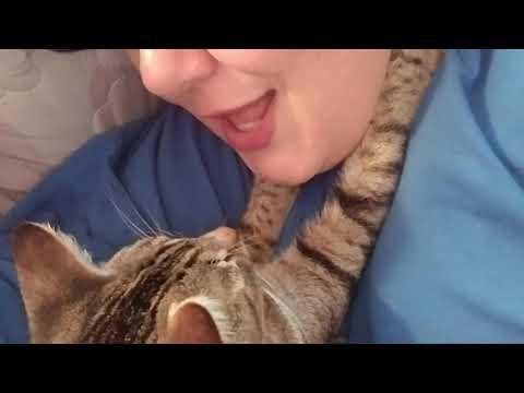 Dragon Li - Optimus Prime hugs his owner during song..