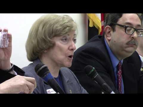 Allegany County Tea Party CD-6 Republican Debate - Part 1