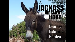 A JACKASS IN THE JUDGMENT HOUR: Bearing Balaam's Burden