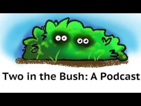 Episode 8: Cursing, Bad Habits, and Customer Service
