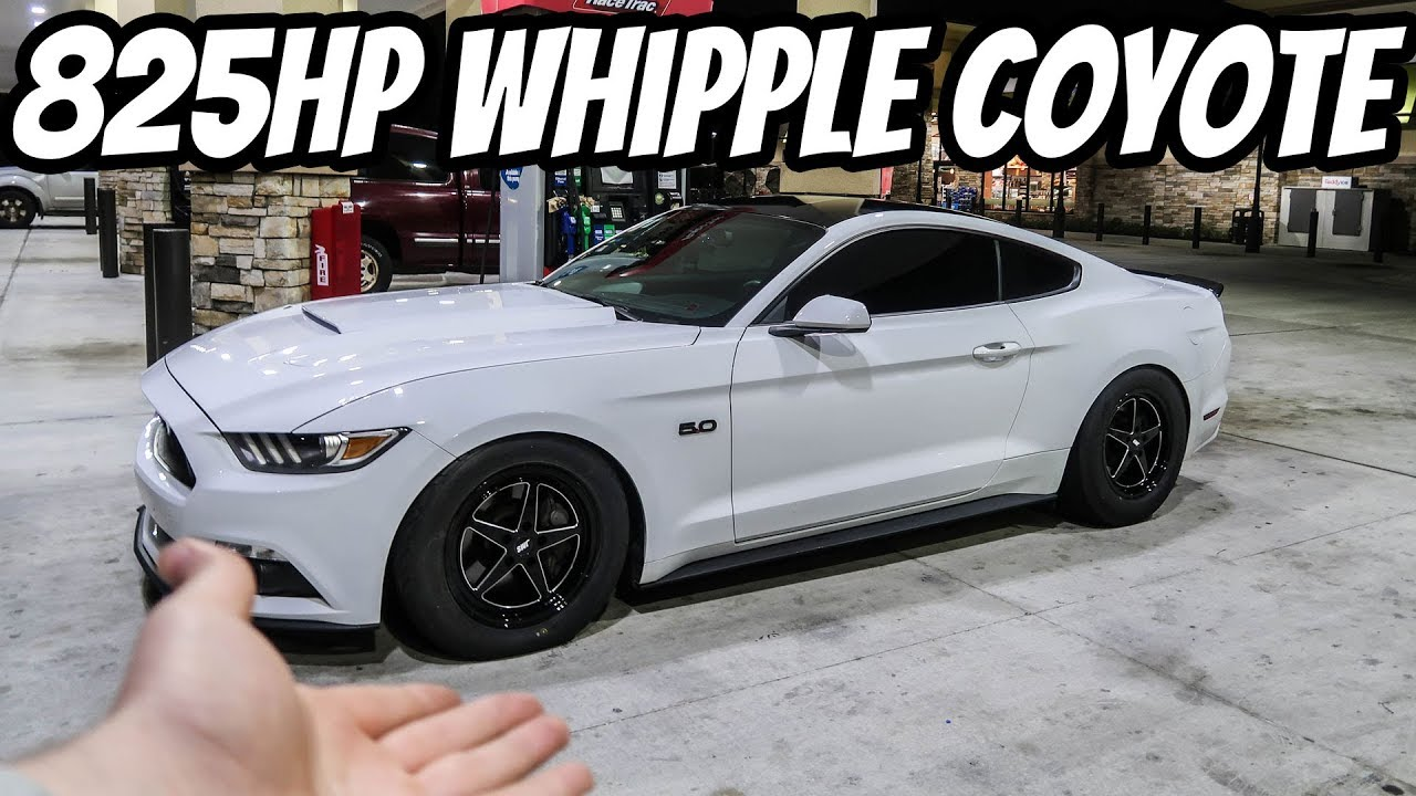 825hp Whipple S550 Coyote Gets Drag Wheels And Slicks Youtube