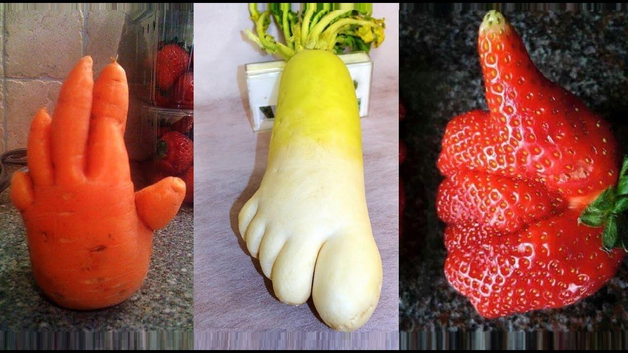 смешные картинки овощи и фрукты