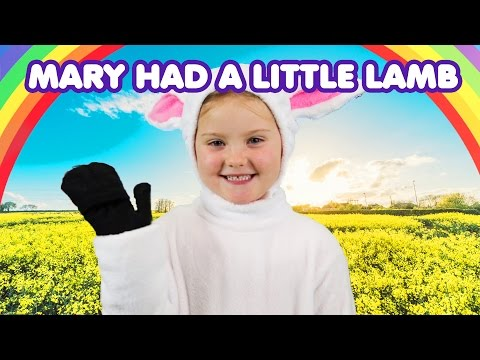 Mary Had a Little Lamb | Nursery Rhymes