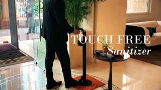 Meluha The Fern- Staygiene