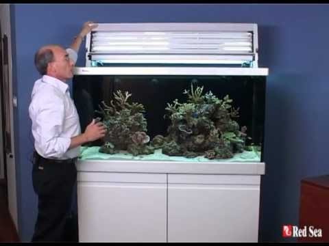 Red Sea Max S Line Marine And Coral Reef Aquarium Systems