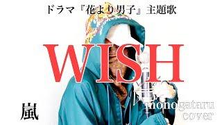 WISH - 嵐 (cover) 嵐 動画 4