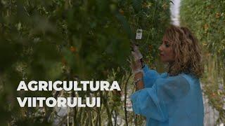 Românii și agricultura bio