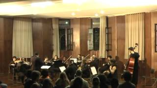 A Musical Joke-Mozart k522-3 adagio cantabile-Camerata Erudita- 22 06 2012